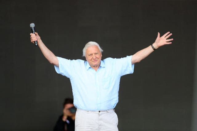 Sir David Attenborough announced the series on the Pyramid Stage of Glastonbury Festival (Aaron Chown/PA)