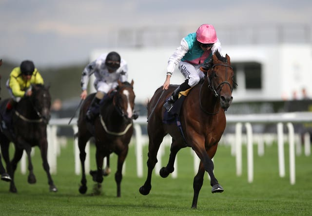 Sangarius looked the real deal when winning a race won in the past by Frankel at Doncaster