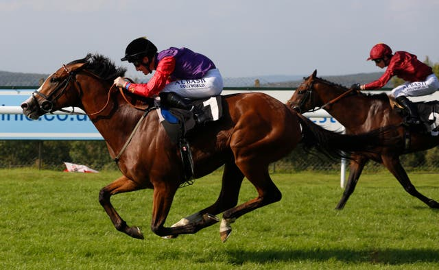 Call To Mind winning at Goodwood last summer