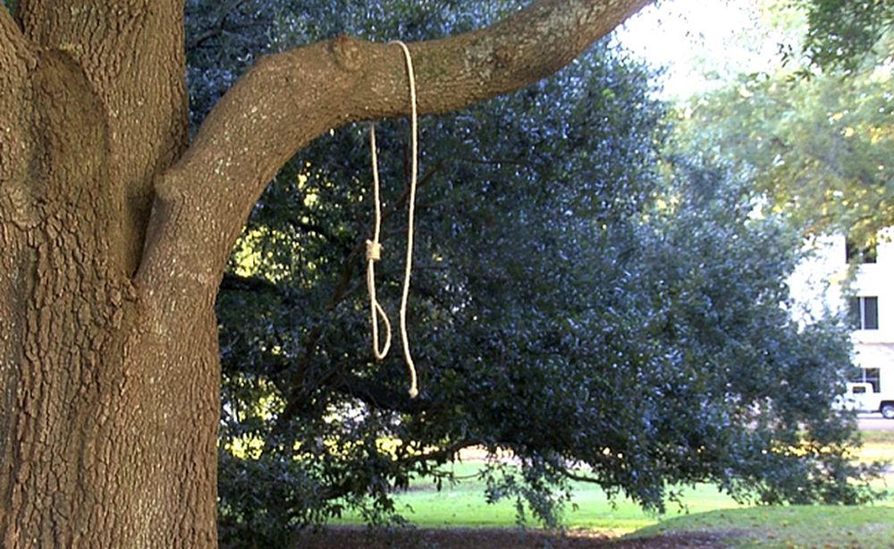A noose hangs on a tree in Jackson