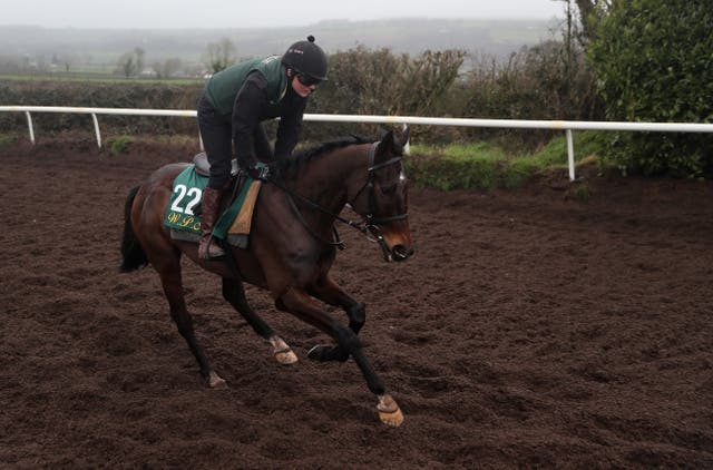 Klassical Dream exercising at Willie Mullins' Closutton base