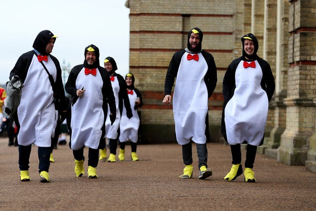 Penguins fancy dress