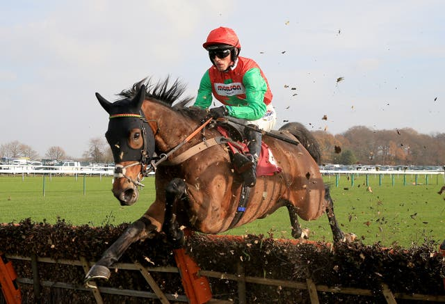 Grand Sancy is looking for a first top-level triumph having landed the Kingwell Hurdle last time out