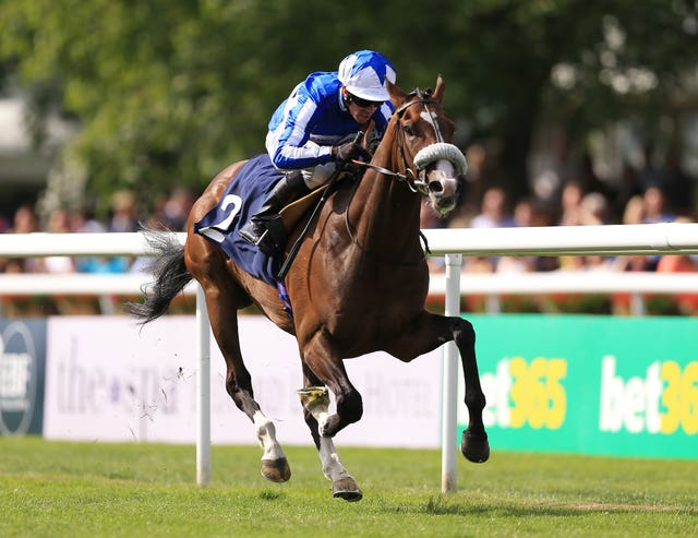 Beat The Bank in winning action at Newmarket