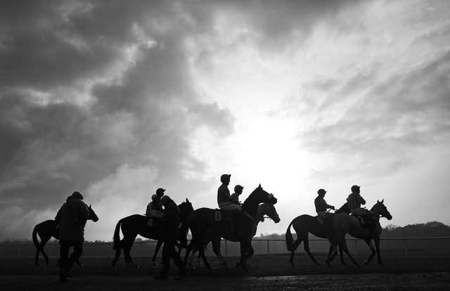 The runner and riders before The Ladbrokes