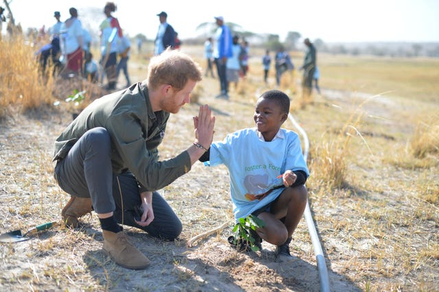 The Duke of Sussex helps local schoolchildren plant trees at the Chobe Tree Reserve in Botswana, on day four of their tour of Africa