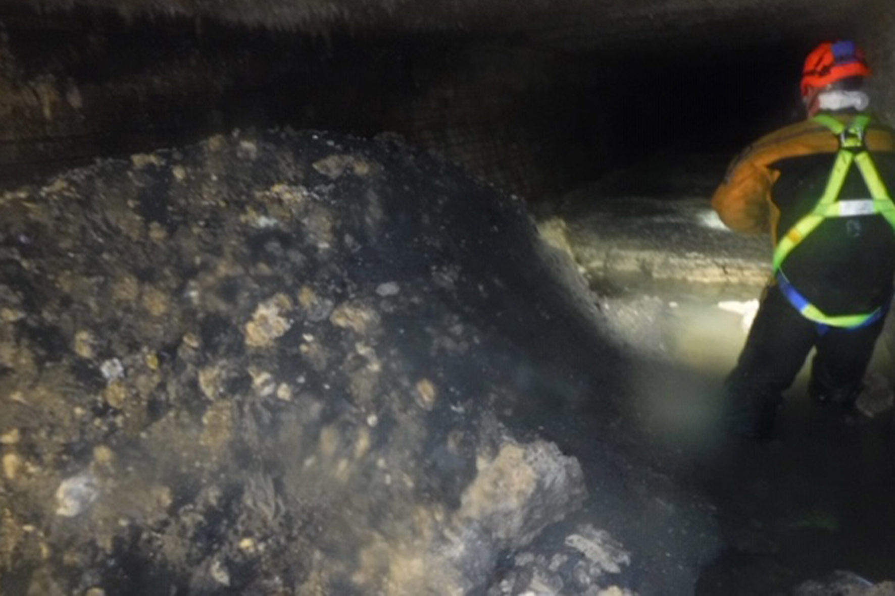 What's in a fatberg? Scientists answer the question