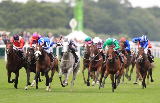 Lord Glitters (grey) comes out on top in the Queen Anne