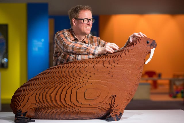 Technician Alistair MacKillop with a Lego brick model of the Horniman Museum's famous 'Overstuffed Walrus