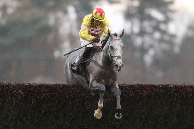 Politologue is highly rated by trainer Paul Nicholls