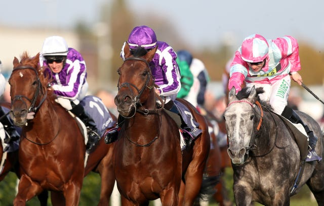 Magna Grecia (centre) was a game winner at Doncaster
