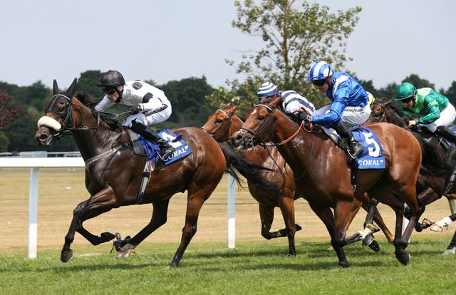 Judicial was a winner at Sandown back in July