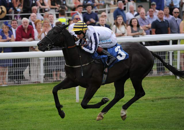 Line of Reason bids to win the Scottish Sprint Cup for a second time
