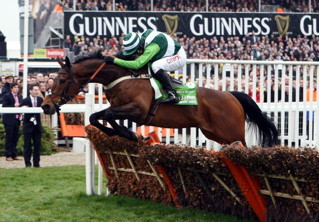 Rock On Ruby provided Fehily with his first Champion Hurdle