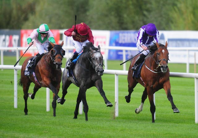 Roaring Lion fought out a thrilling finish with Saxon Warrior in the Irish Champion Stakes last time