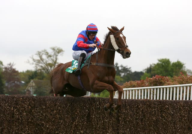 Step Back was a wide-margin winner of the bet365 Gold Cup last term