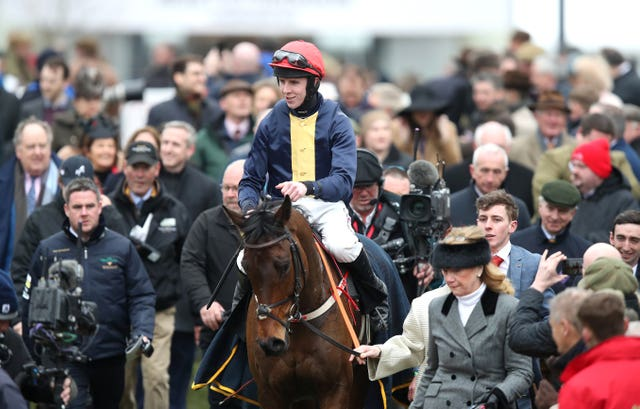 City Island and Mark Walsh return after their win in the Ballymore Novices' Hurdle at Cheltenham