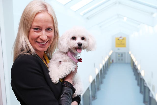 Dogs Trust in Dublin