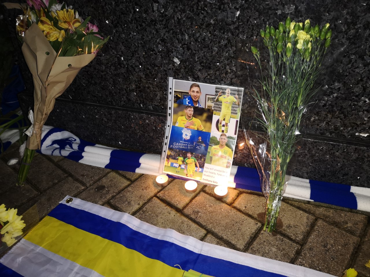 Crowdfunding page started for new Sala search