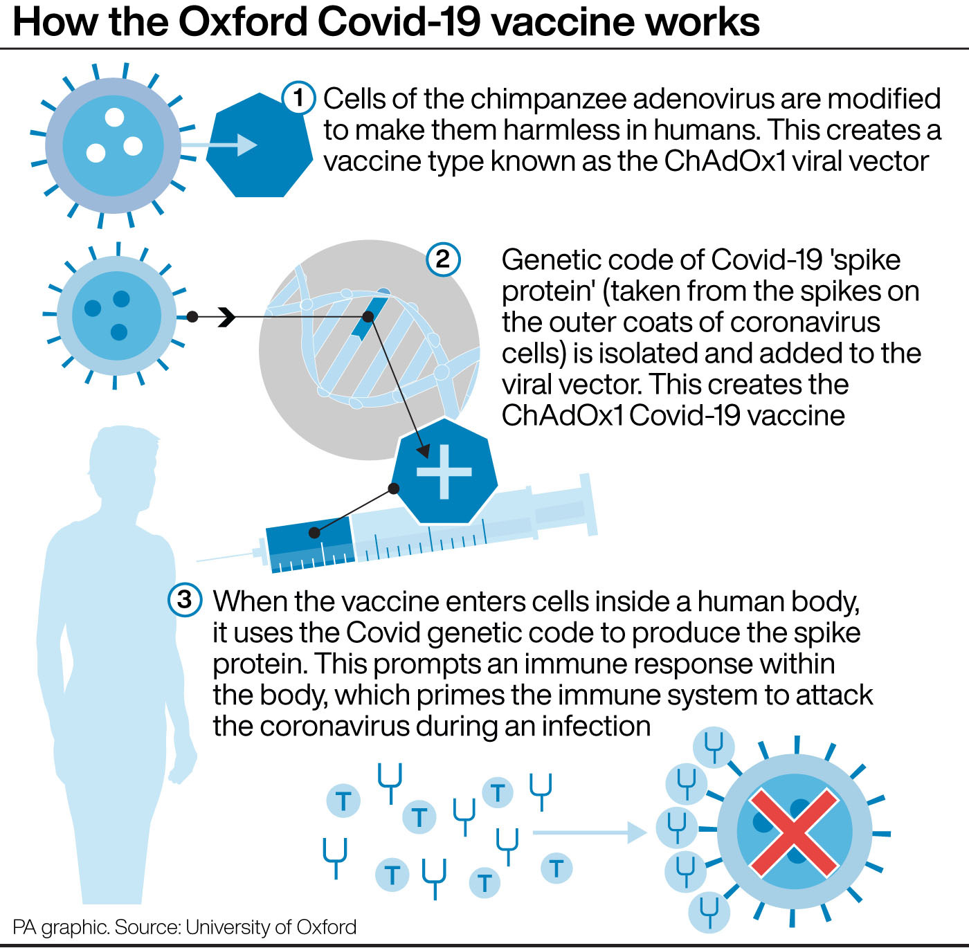 Oxford vaccine produces strong response in older adults, early data suggests