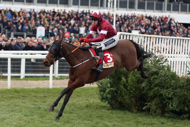 Tiger Roll was in imperious form winning at Cheltenham for the fourth time last week