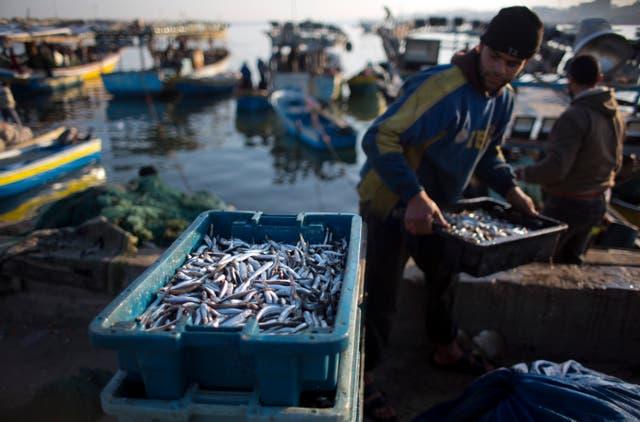 Suez Canal Stressed Mediterranean