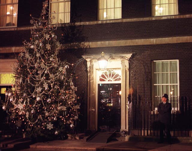 POLITICS Lights tree