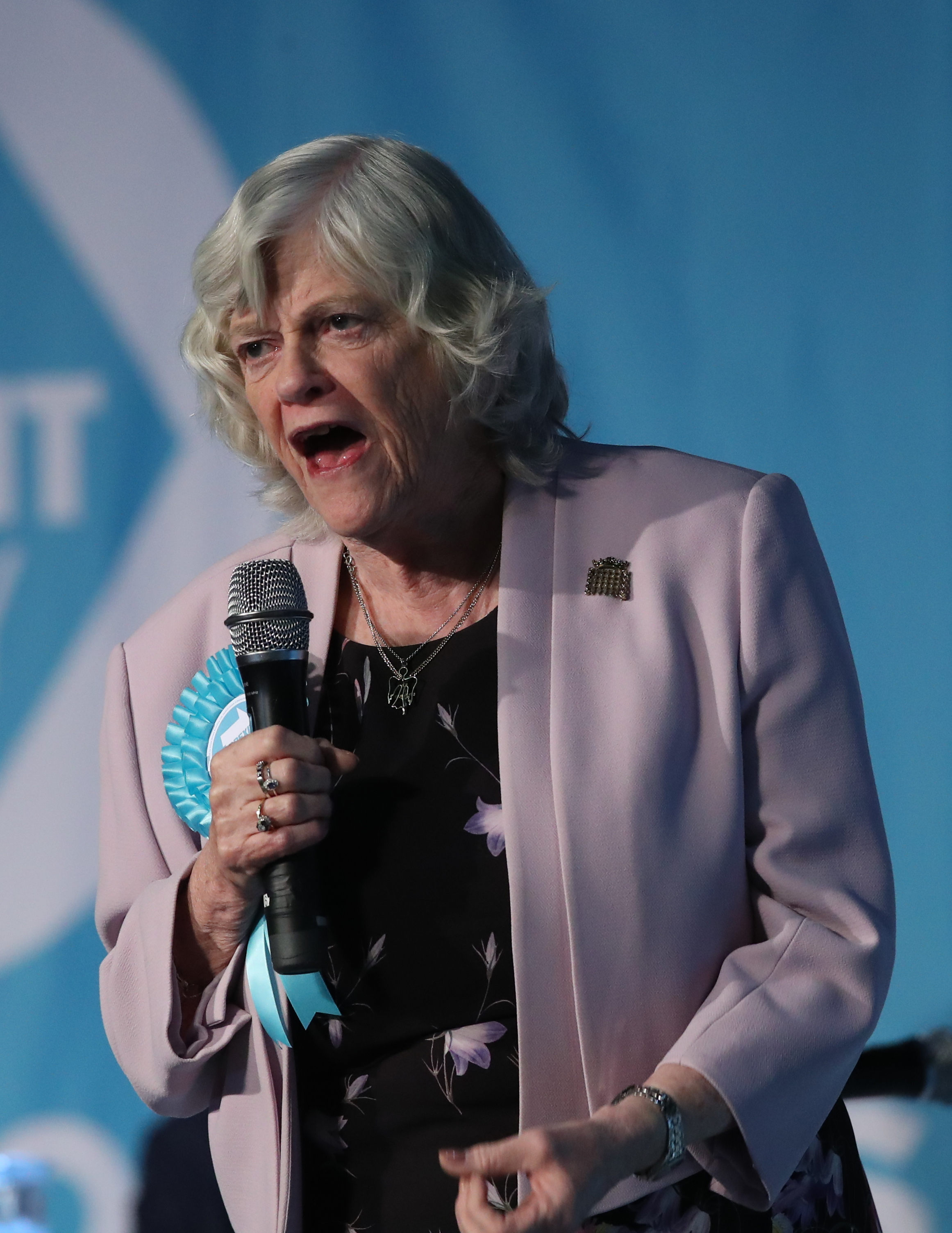 Brexit Party Has More Support Than Britain's Main Parties