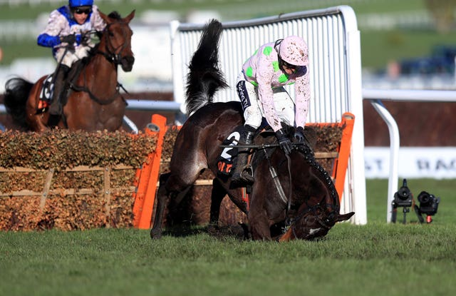 It was a day of ups and downs for Willie Mullins, as Benie Des Dieux fell at the last to hand victory instead to Roksana in the OLBG Mares' Hurdle