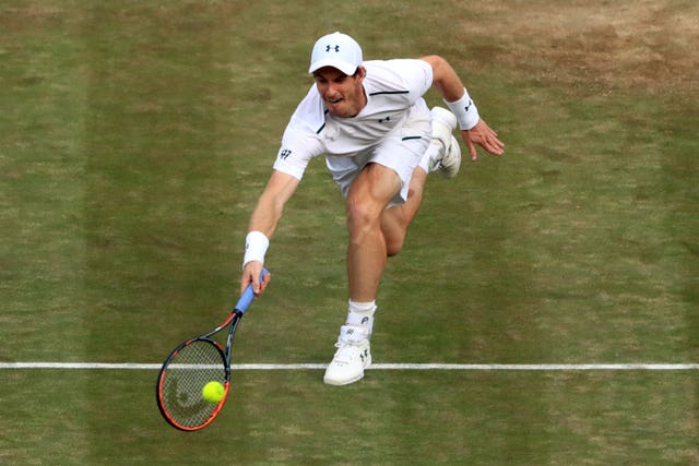 Andy Murray could return in the doubles at Wimbledon