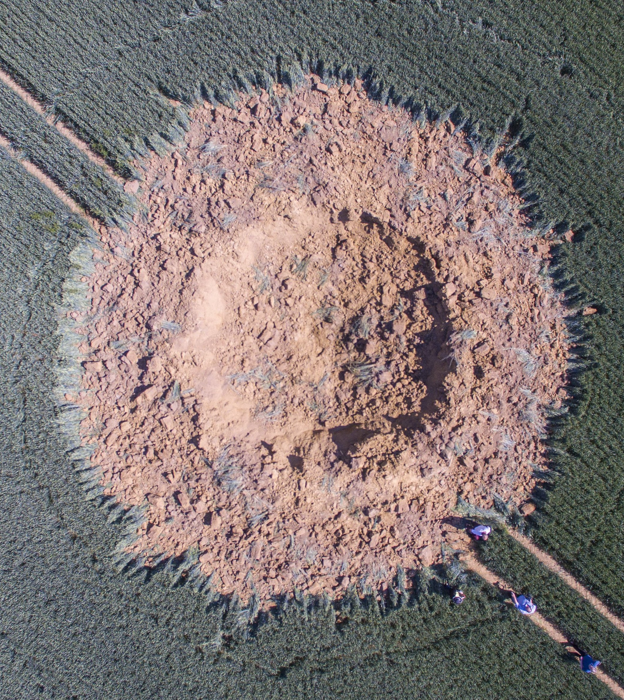 Mysterious explosion in a German cornfield was probably a WWII bomb