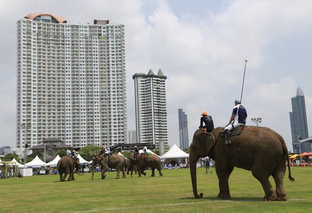 Polo players behind mahouts sit astride each elephants as they play during the King's Cup Elephant Polo tournament in Bangkok, Thailand (Sakchai Lalit/AP)