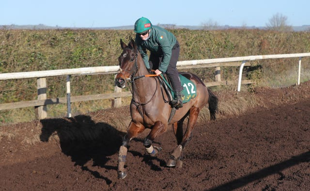 Sharjah and Eilish Byrne on the gallops at Willie Mullins' Closutton yard