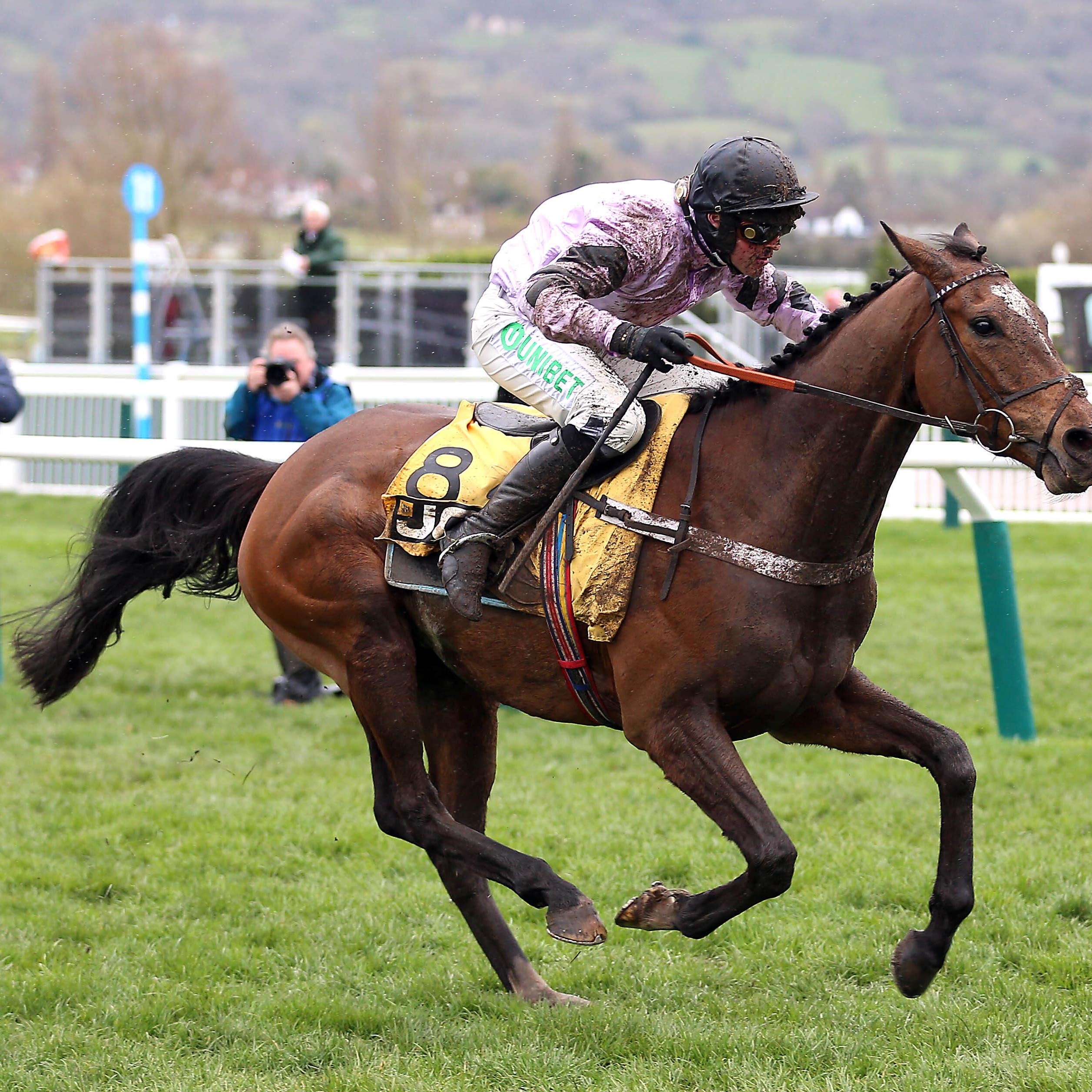 Pentland Hills powers up the hill to win the Triumph Hurdle