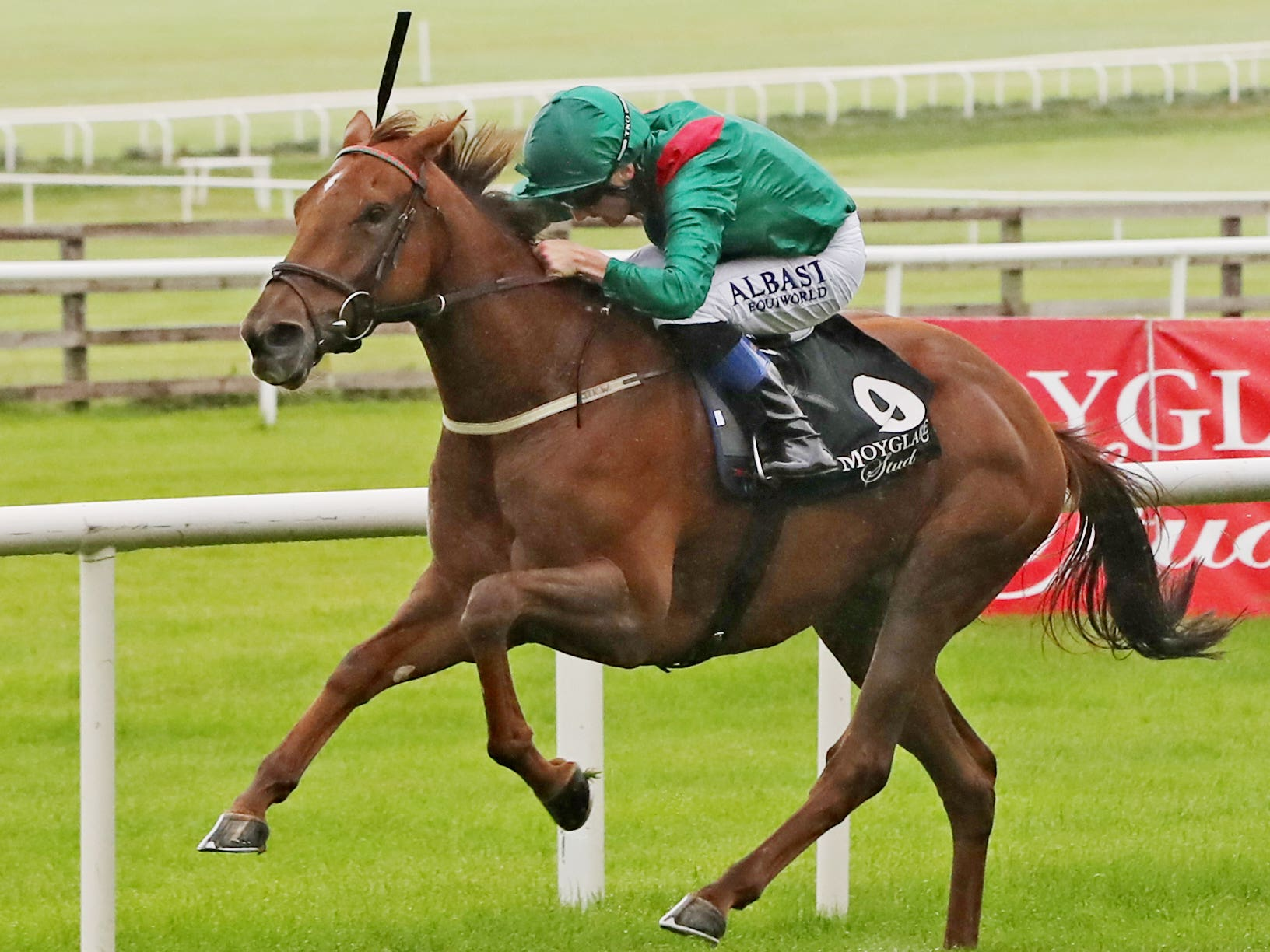 """Tarnawa ridden by Chris Hayes wins The Moyglare """"Jewels"""" Blandford Stakes race during day two of the Longines Irish Champions Weekend at Curragh Racecourse, Co. Kildare."""