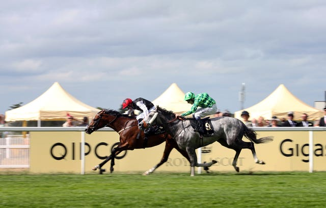 Free Eagle was a Royal Ascot winner for Smullen