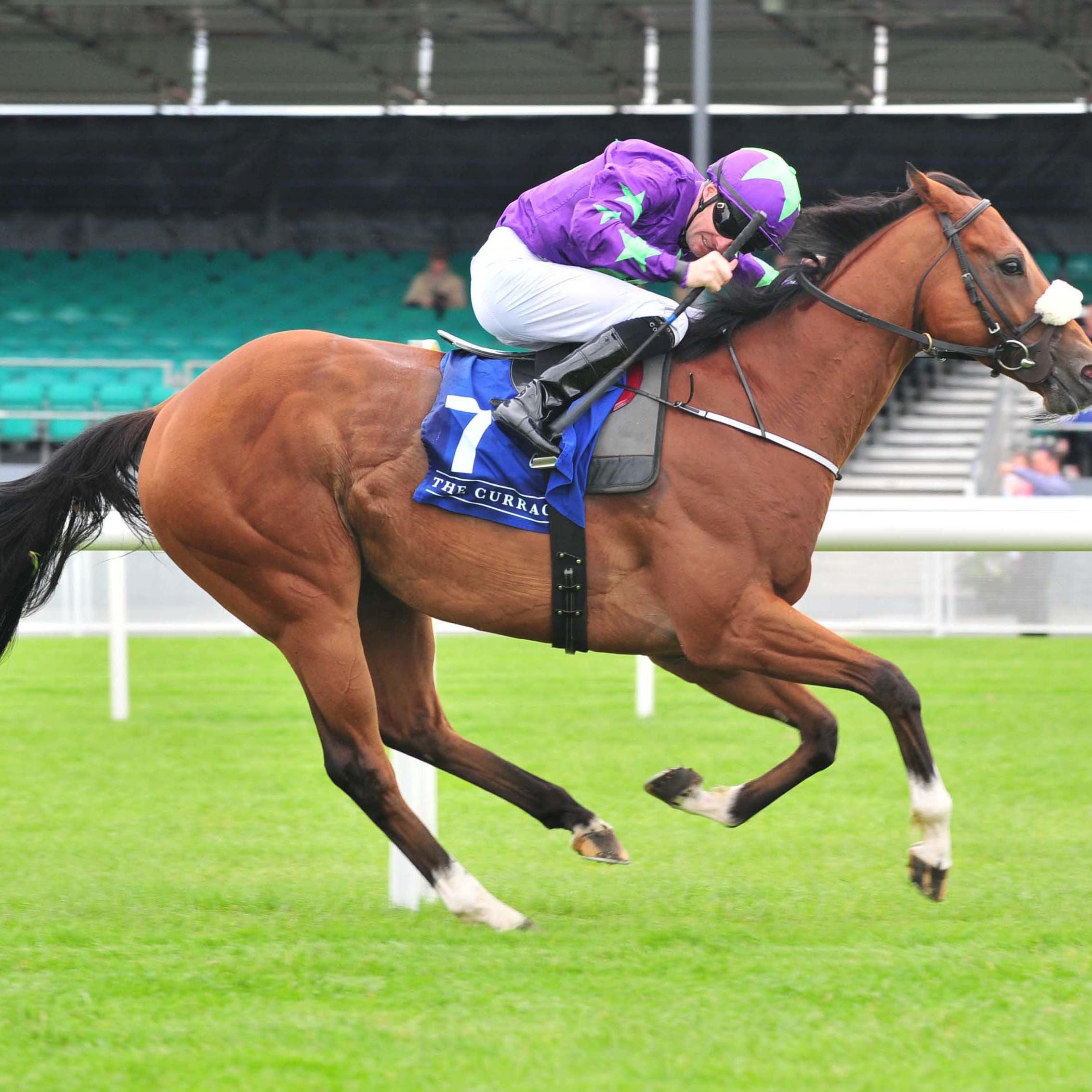 St Brelades Bay kept Jessica Harrington among the winners at Gowran