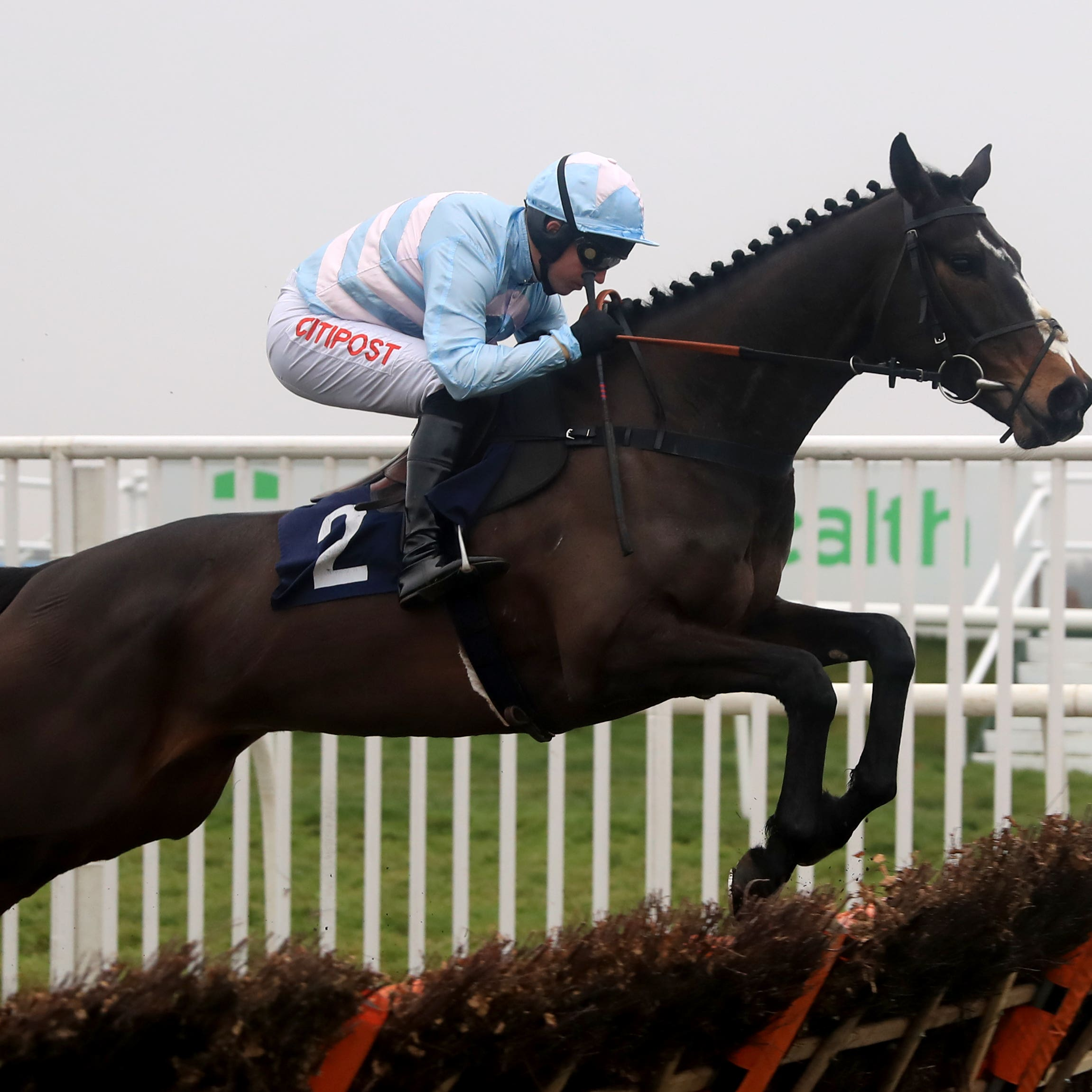 Black Op may reappear at Exeter week