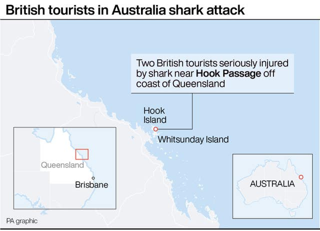 Shark attack graphic
