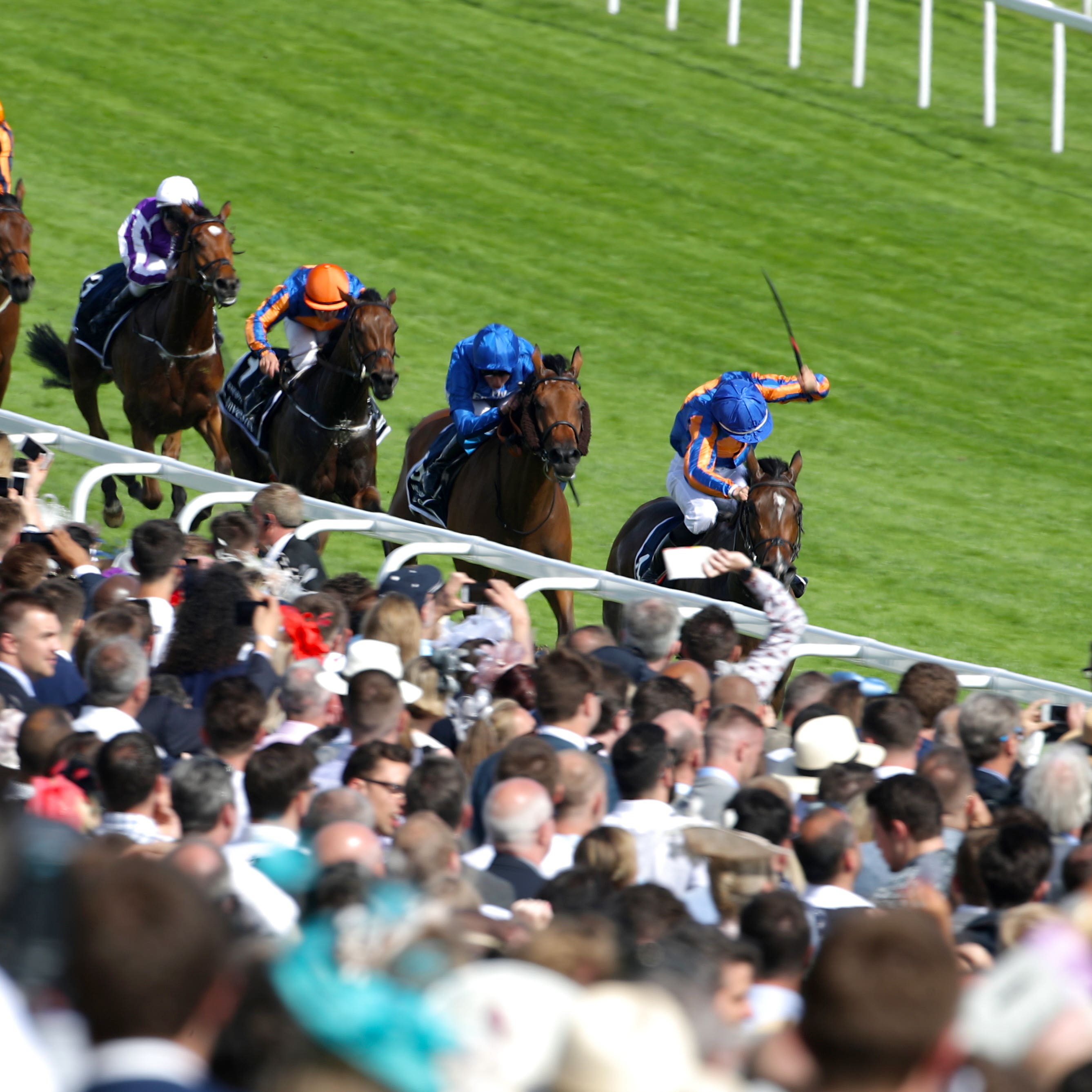 Wild Illusion (second right) finishing second to Forever Together in the Oaks at Epsom