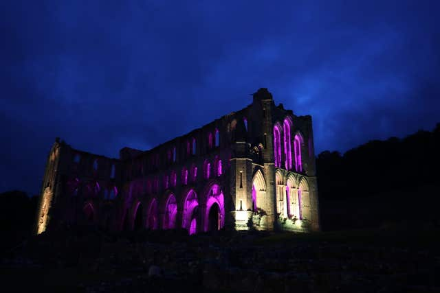 Illuminating Rievaulx