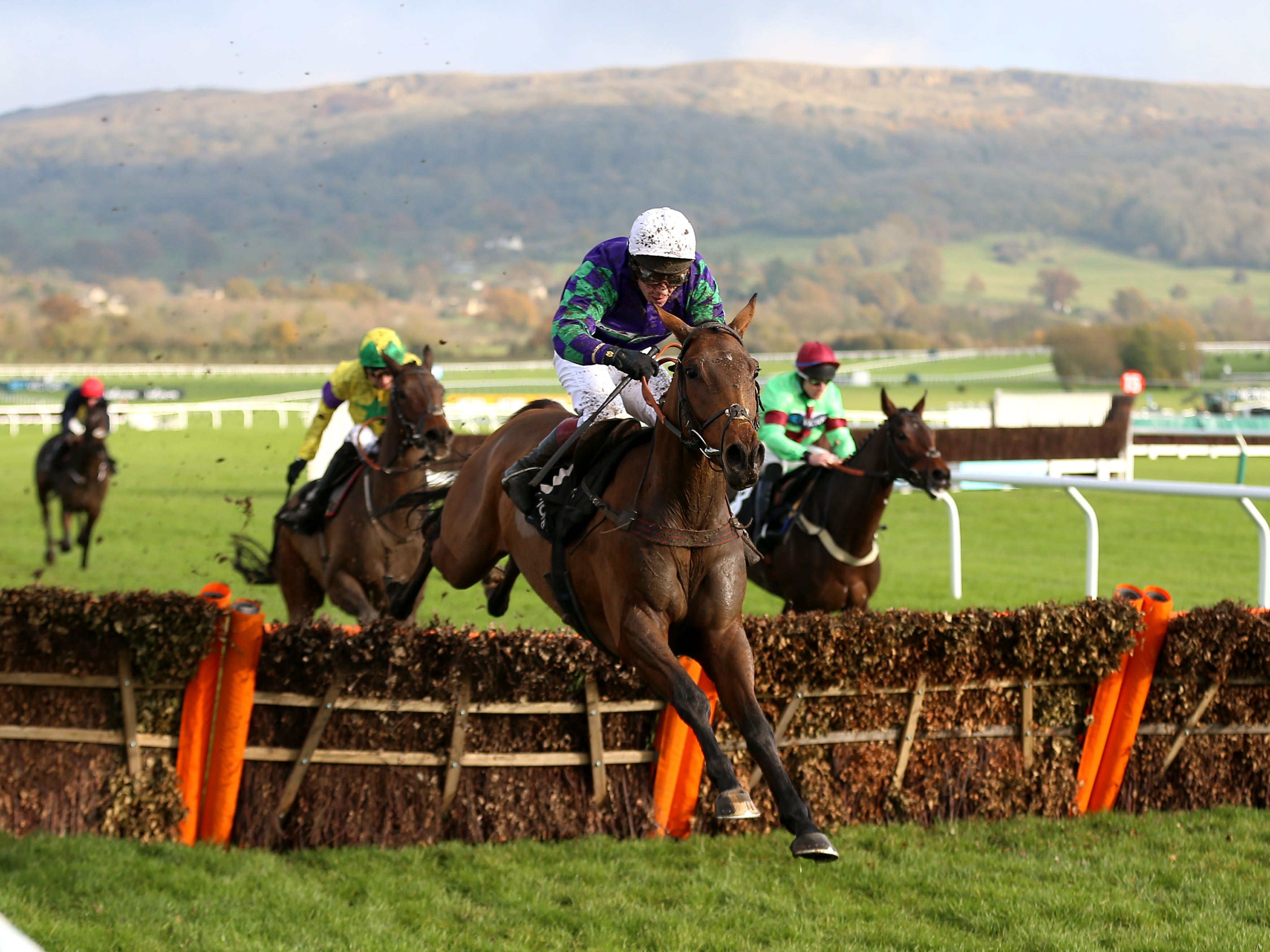 Thyme Hill is a leading hope for the Cheltenham Festival (Nigel French/PA)