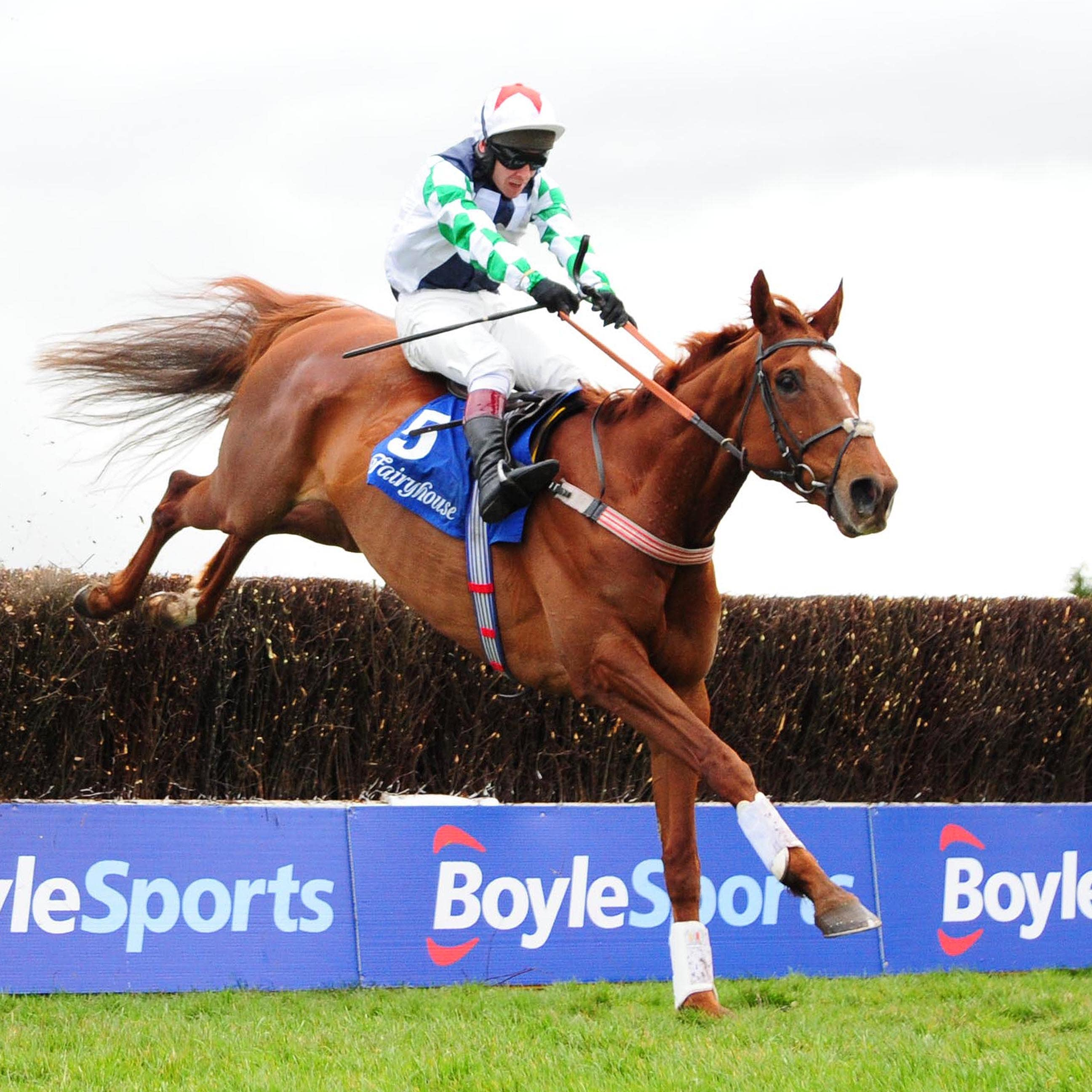 Top Gamble will be ridden by his trainer Kerry Lee in a charity race at Hereford
