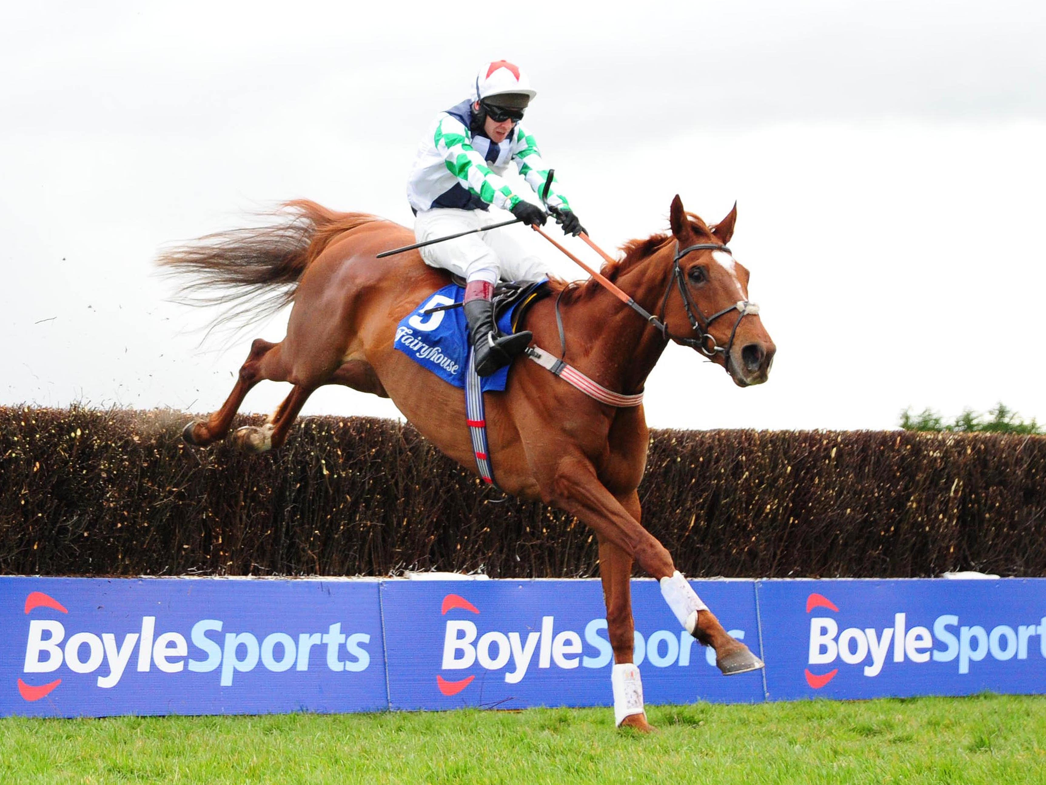 Top Gamble will be ridden by his trainer Kerry Lee in a charity race at Hereford (PA)