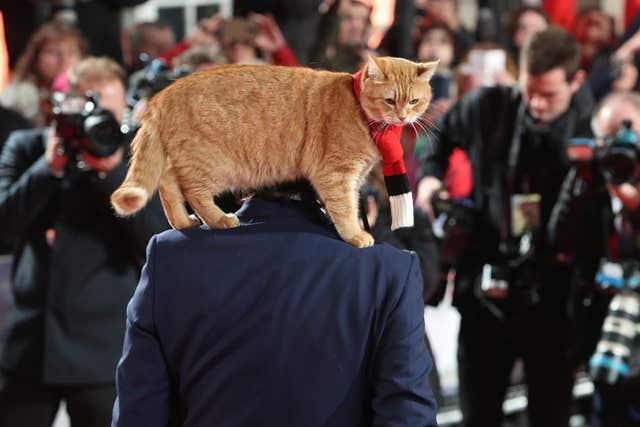 A Street Cat Named Bob World Premiere - London
