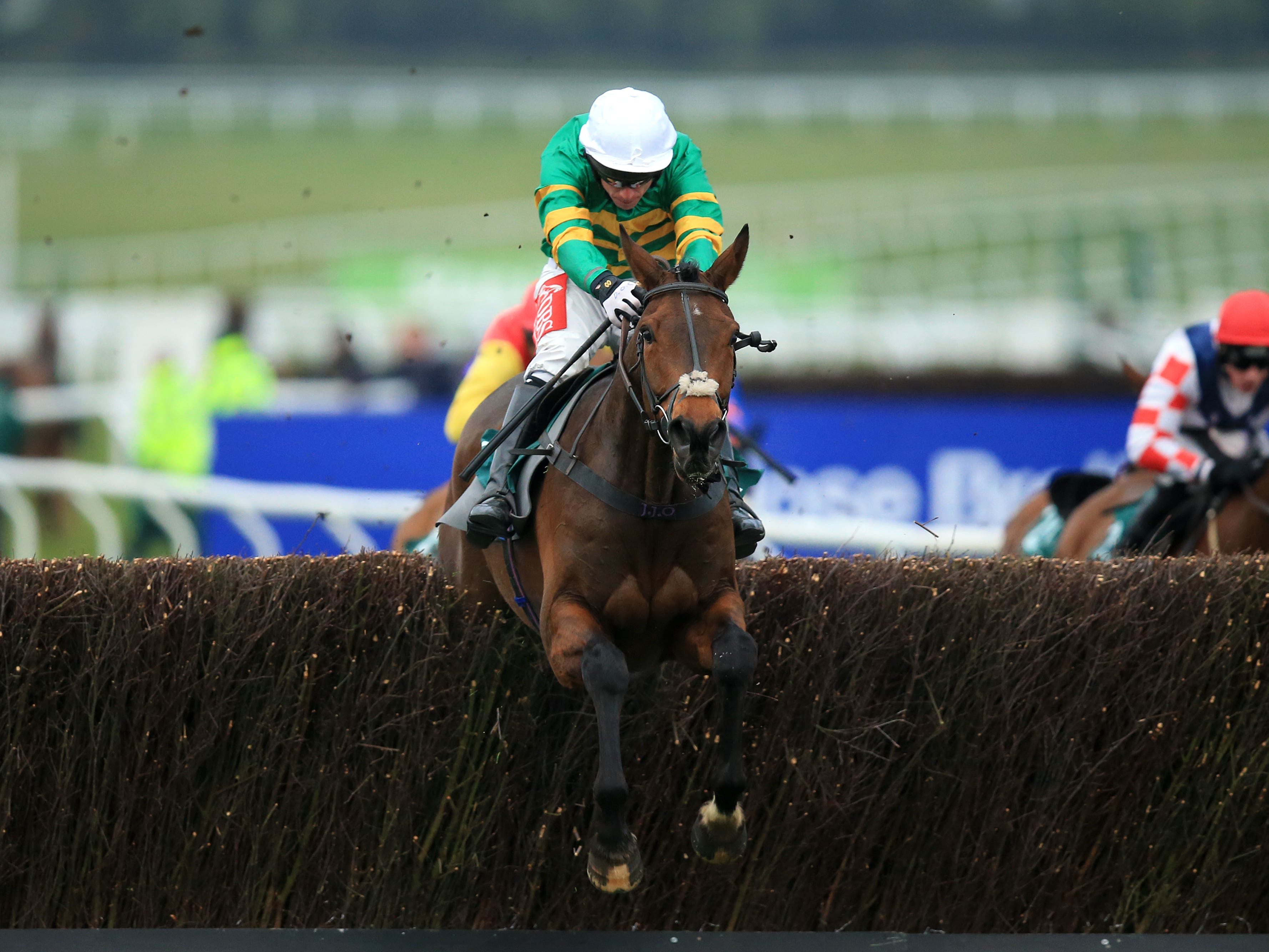 Minella Rocco could be going hunter chasing (Mike Egerton/PA)