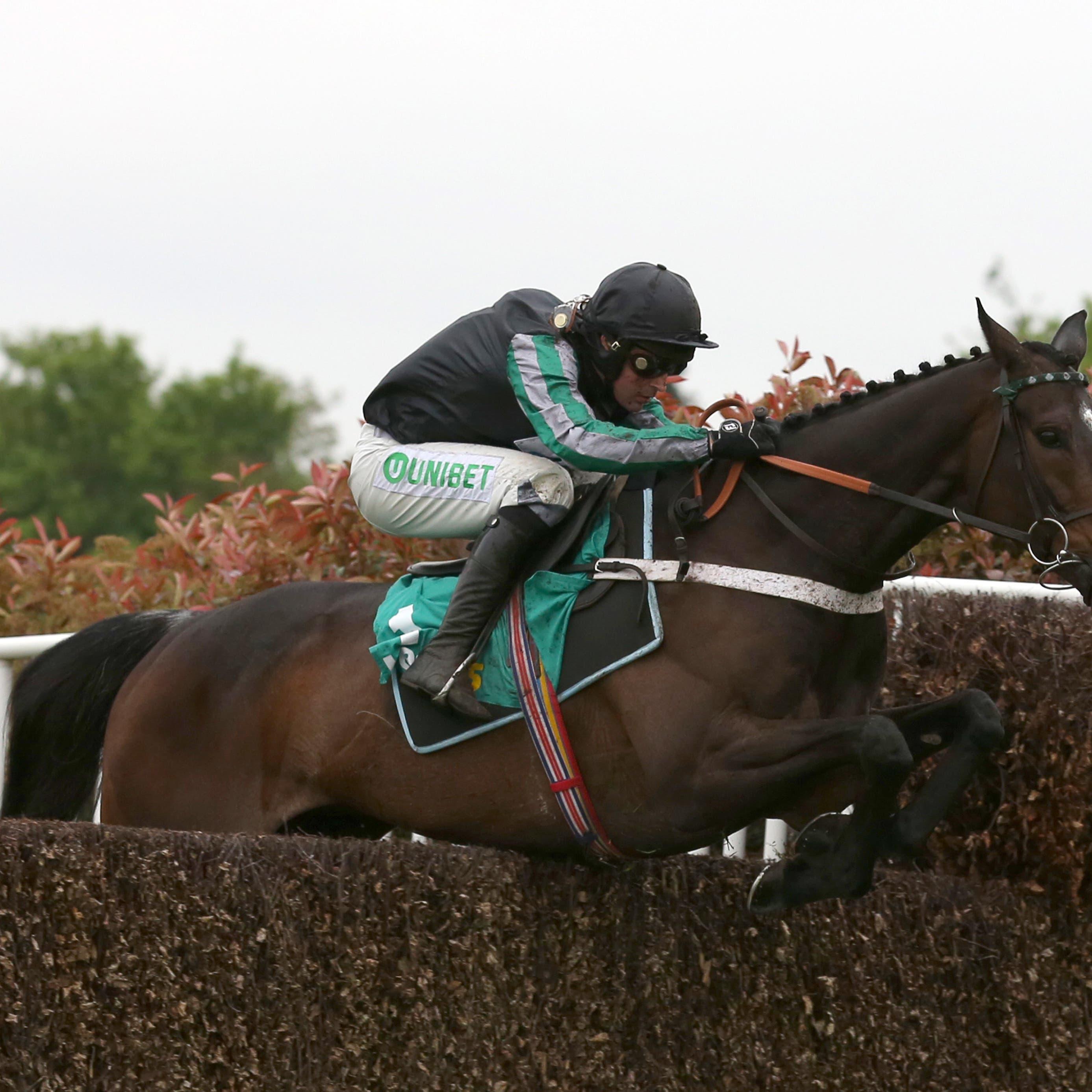 Altior will not run at Cheltenham this weekend