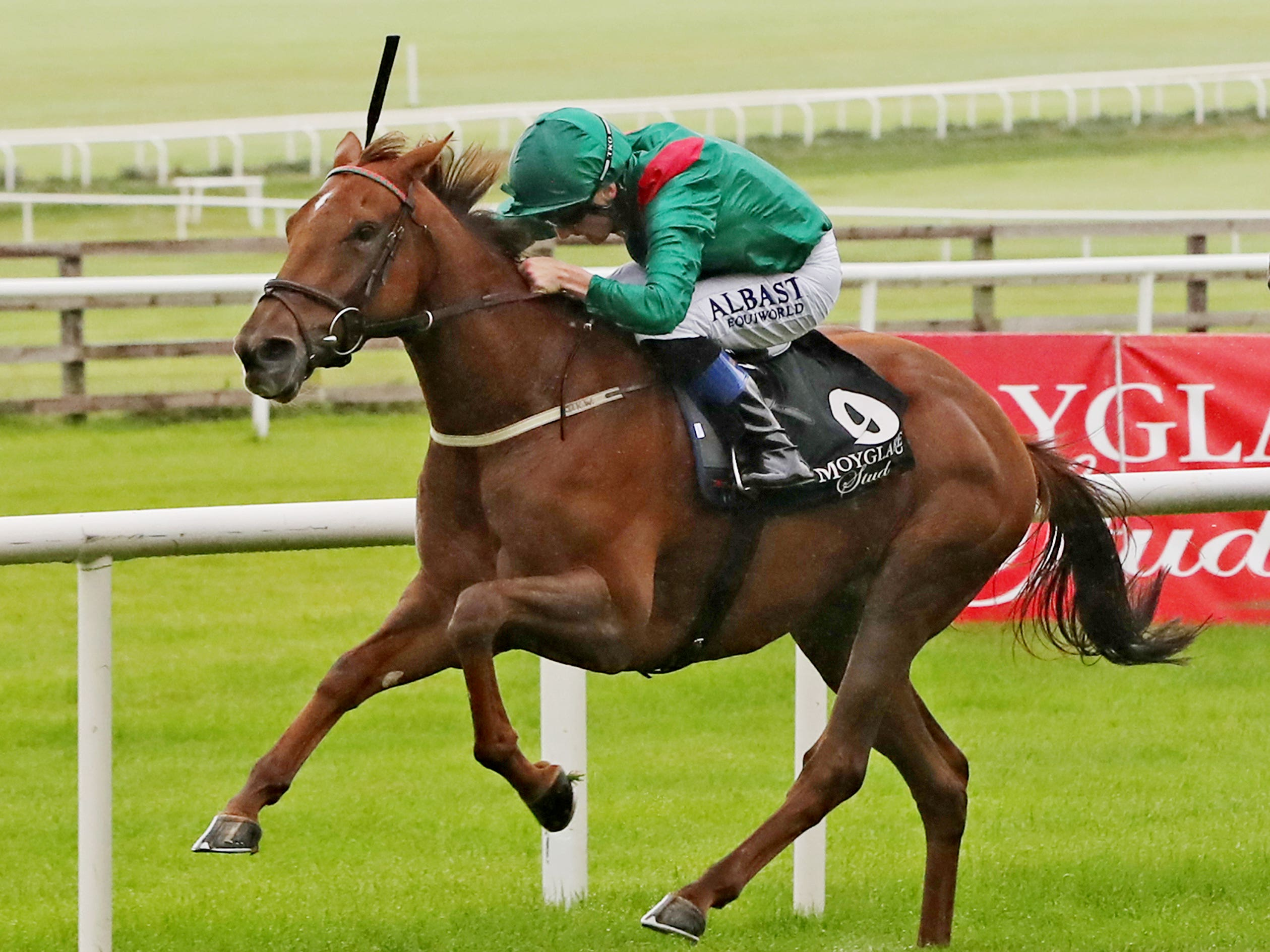 Tarnawa returns to action at Leopardstown (Niall Carson/PA)