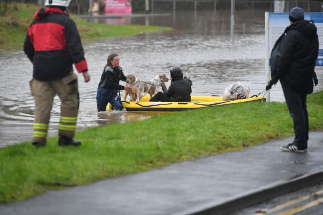 A member of the public and their dogs are rescued