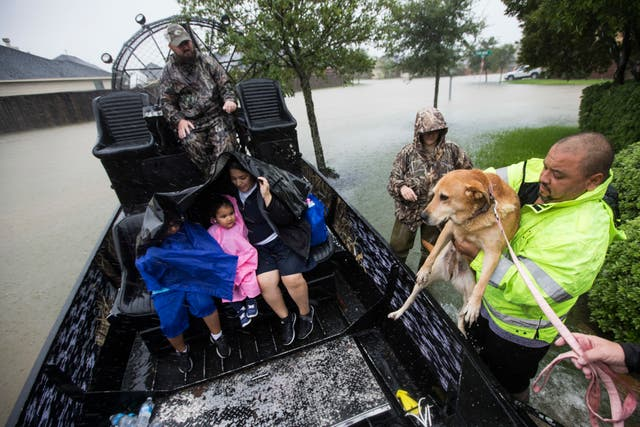 Dog lifted on to an air boat after Hurricane Harvey caused rising flood waters and forced the family to evacuate. (Brett Coomer/Houston Chronicle/AP)